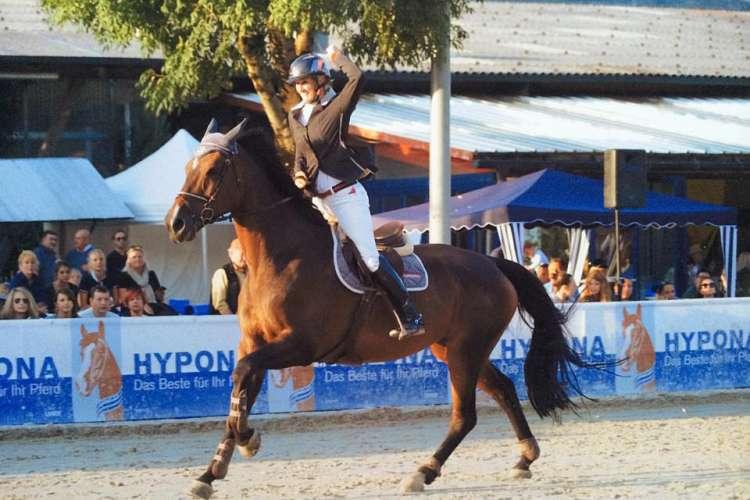 pferdehandel01
